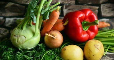 Best tips for organic gardening - the Pros and the Cons