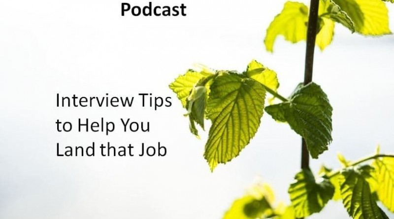 Interview Tips to Help You Land that Job