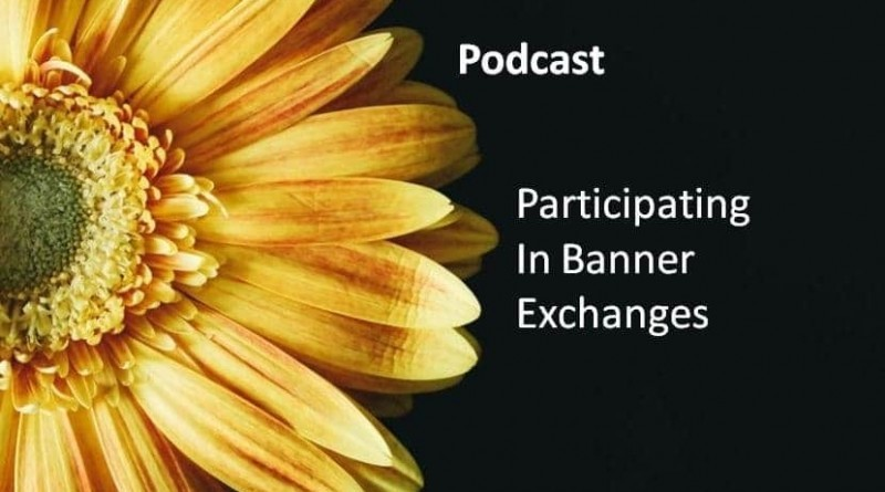 Participating In Banner Exchanges