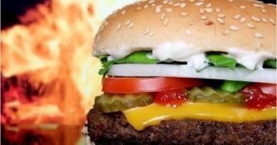 Burger Samosa